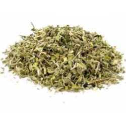 Damiana leafs