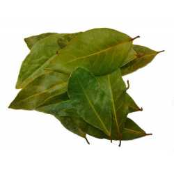 Laurel leaf BIO