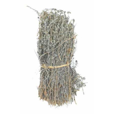 Branch bund thyme