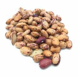 "Beans ""pinta"""