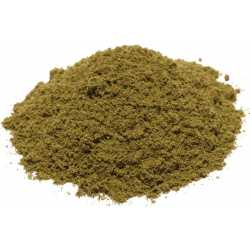 Origan powder