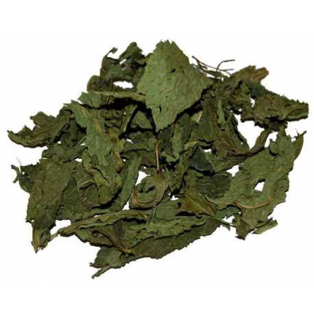 Dried molokhia leaves