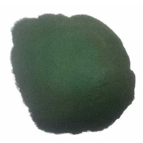 Alga Chlorella en polvo 500 G